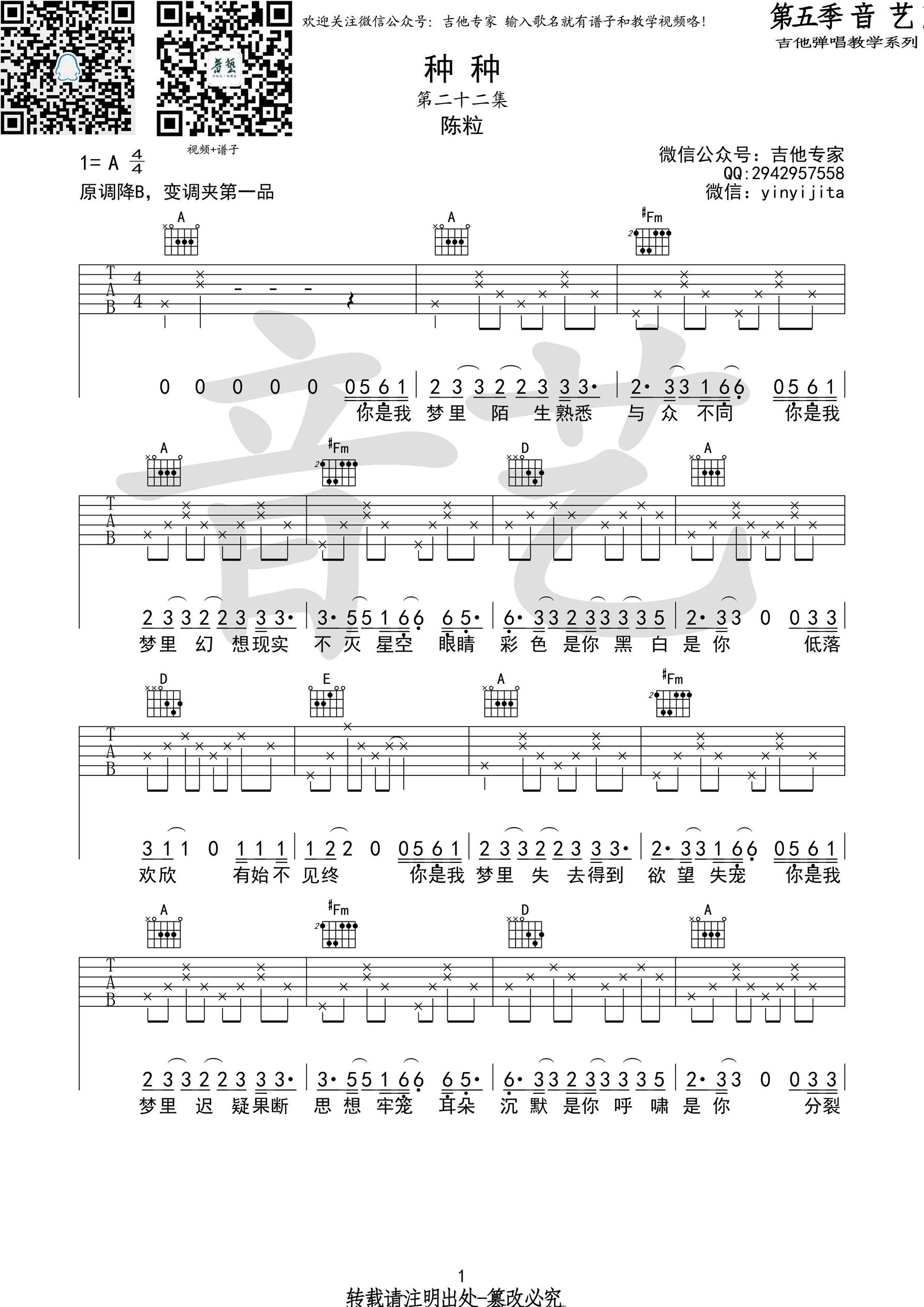 陈粒《种种》吉他谱 A调吉他弹唱谱1